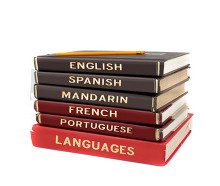 Collection of foreign language books